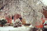 """Capturing the """"Icepocalypse"""" in story and image"""