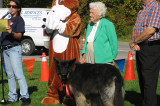 Photo Gallery of DogFest at Riverwood Conservancy