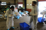 Sheridan's waste audit digs deep