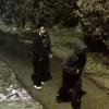 Police investigating robbery in trail near Trafalgar Campus