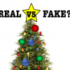 Real vs. fake christmas trees, there's no argument