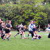 LIVE: Women's Rugby to face Conestoga