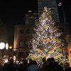 Toronto Christmas Market comes to light