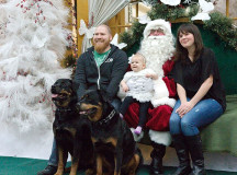 Lee and nancy Young take their one-year-old baby Kaylin and eight- and 10- year-old Rottweilers Dozer and Willy to see Santa
