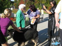 Mayor Hazel McCallion, and her dog Missy, join in on the fesitivites