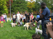 Dogs and their masters gather for the 'Best' contests.