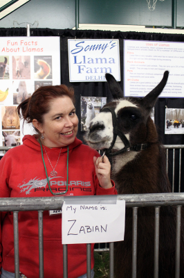 Heather Jewitt, seen here with one of the llamas, came to the Royal to teach visitors about them and their wool.