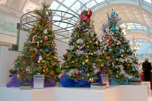 The Body Shops Tree, Left, The Bay's tree, middle, and David's Tea's tree, right, are some of the trees you could win