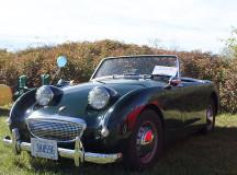 1961 Austin Healey owned by Bert Raposo