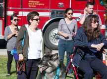 Last's year's top dog, Elke, and her owner Jen were honoured at the event. Elke is a special physical assistance service dog for Jen, who suffers from fibromyalgia.