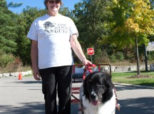Carol Ralston, a volunteer with the Good Guys Carting Dog organization, and her four-year-old Newfoundland dog Mabel offered $2 dog carting rides for charity.