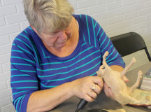 Joanne Coleman working on carving a wooden horse. (Photography by Courtney Blok / The Sheridan Sun)