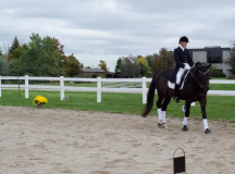 A horse show was on display with two horses, Solero and Dagan.