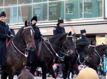 Toronto Mounted Police Officers trotting down Bloor Street West.