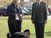 Oakville's Mayor Rob Burton with his wife Wendy and their dog WIllow are happy to be leading the 2.5k walk.